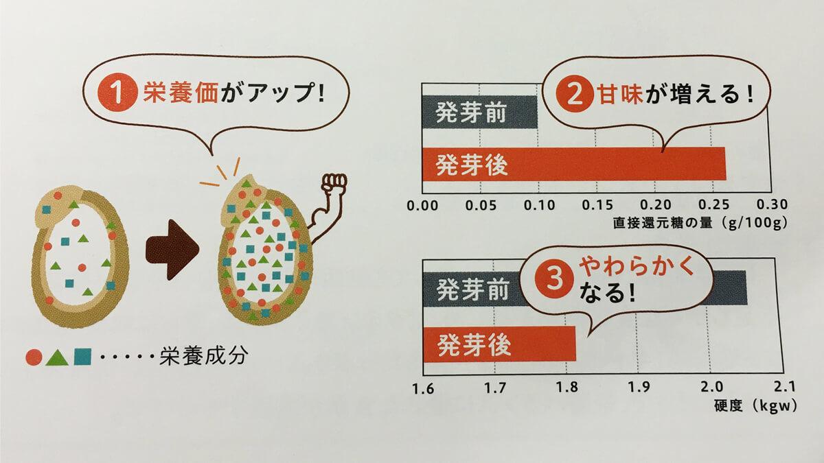 玄米と発芽玄米の栄養素とおいしさ、柔らかさの比較